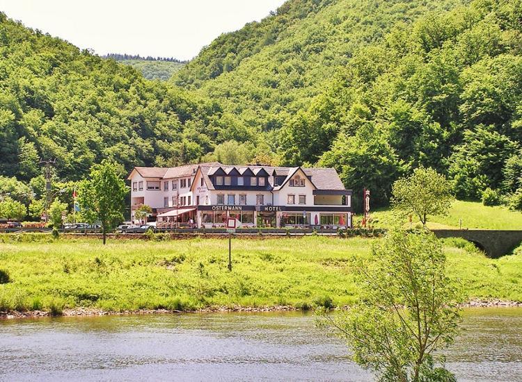 Mosel Hotel Ostermann Landschaft