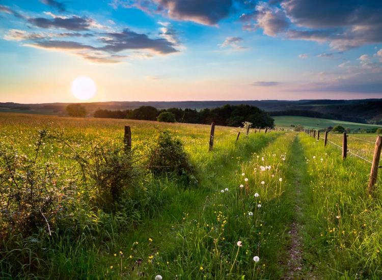 Natur im schönen Vogtland