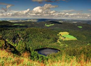 Schwarzwald von oben