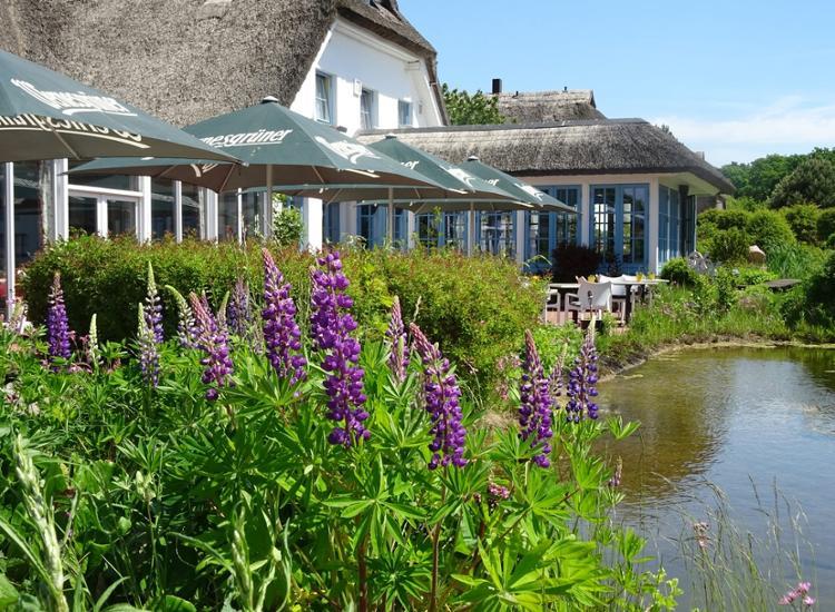 Kurzreise Rügen 4 Tage für 2 Personen im 4 Sterne Wellness Hotel Gutschein Menü 4