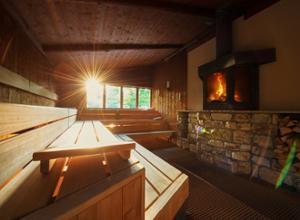 Hotel Freizeit In Sauna