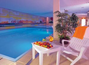 Ringhotel Loews Nuernberg Pool