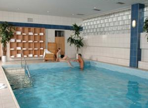 Mercure Bad Homburg Pool
