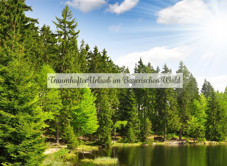 7 Nächte Kurzurlaub in Bayern - Multigutschein für 6 Ferien-Hotels